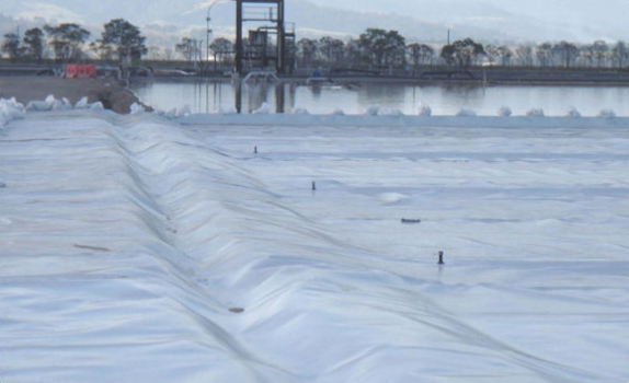 Manildra Group - Nowra, NSW - Odour Control Floating Cover